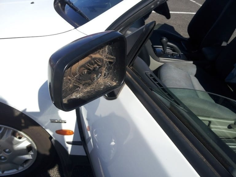 Miroir brisé voiture louée