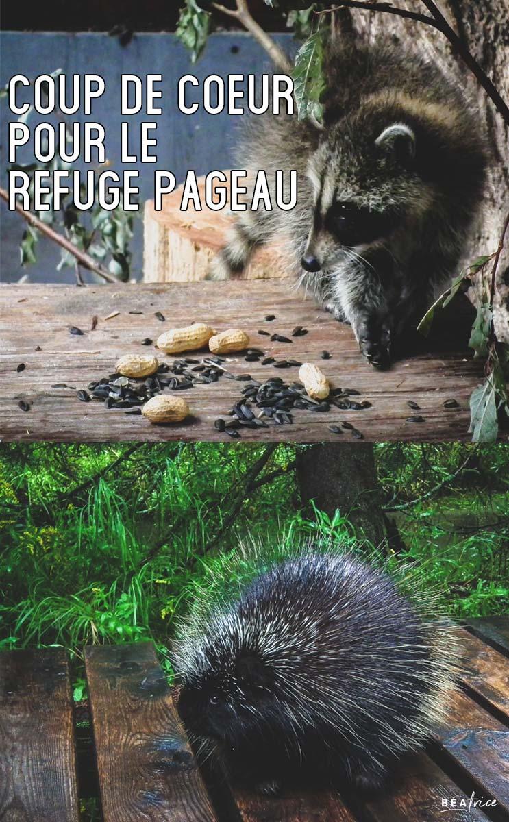 Image pour Pinterest : Refuge Pageau