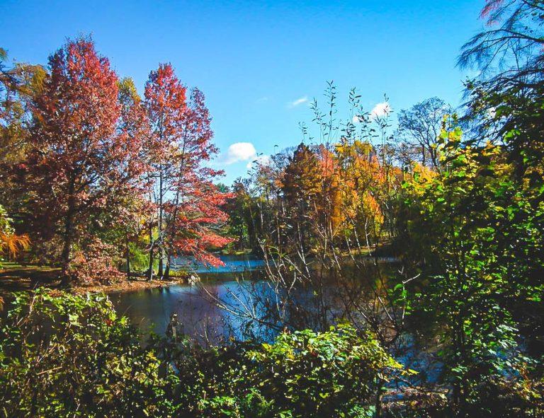 Central Park l'automne