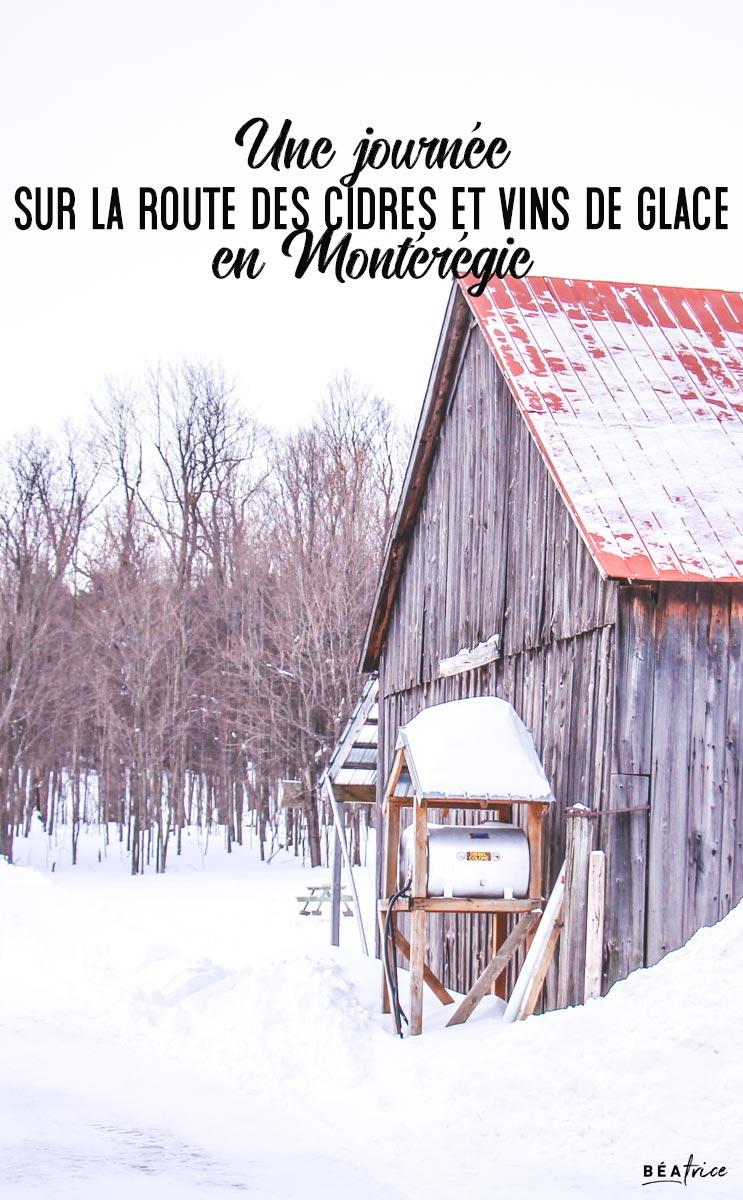 Image pour Pinterest : Cidres et vins de glace en Montérégie