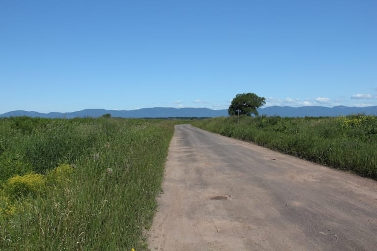 Route à l'Isle-aux-Grues