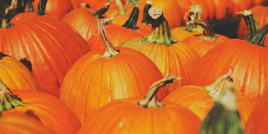 Halloween pas cher
