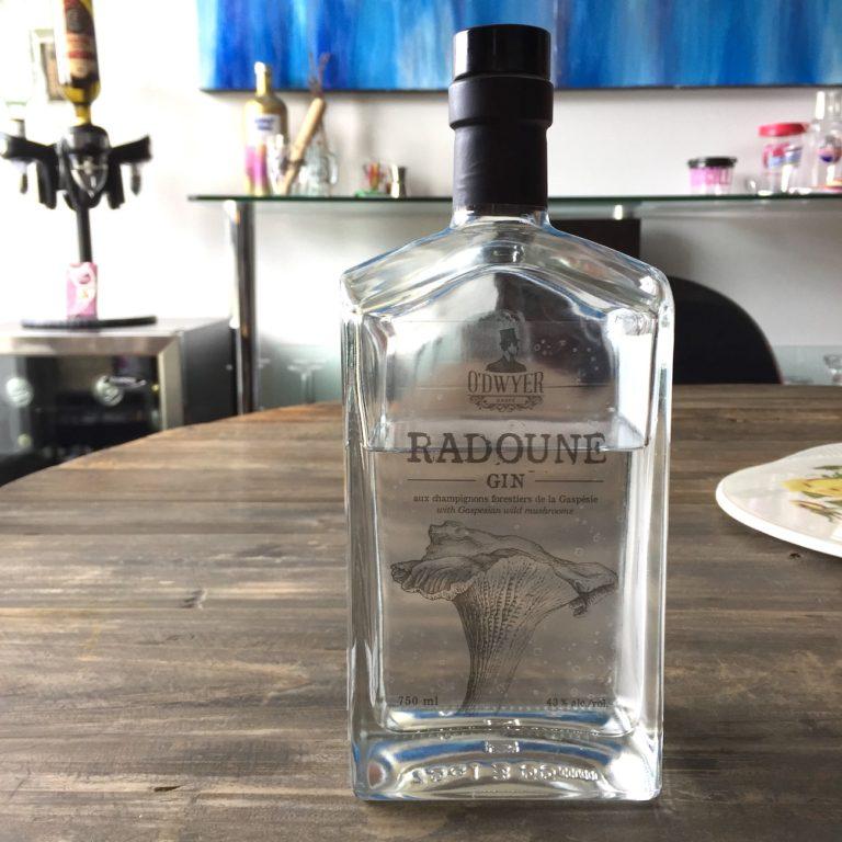 Gin Radoune
