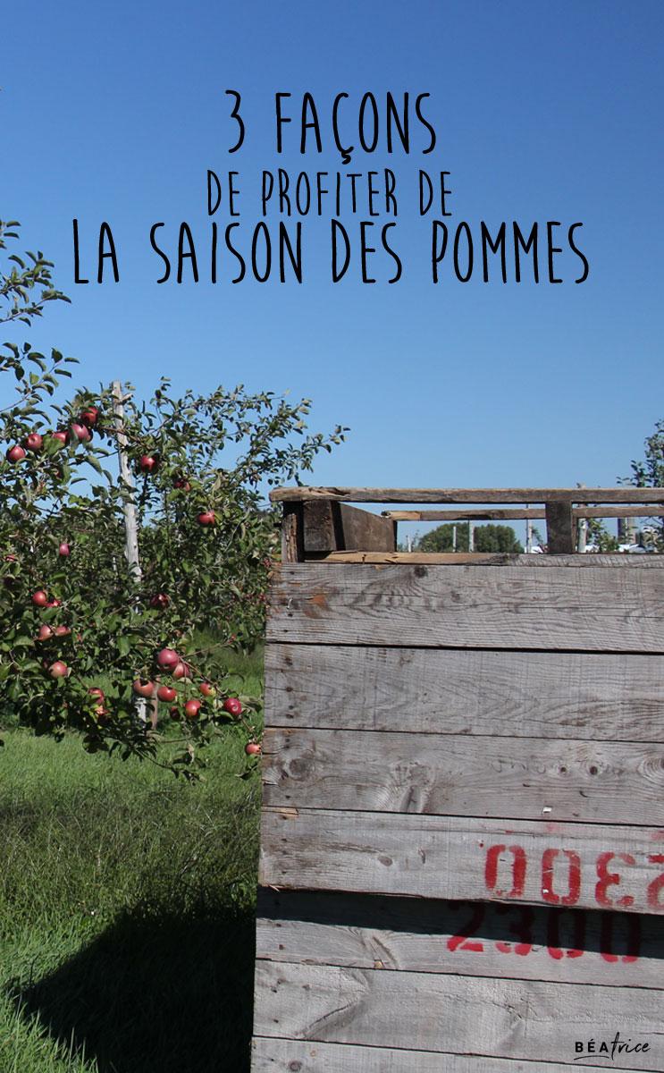 Image pour Pinterest : profiter saison des pommes