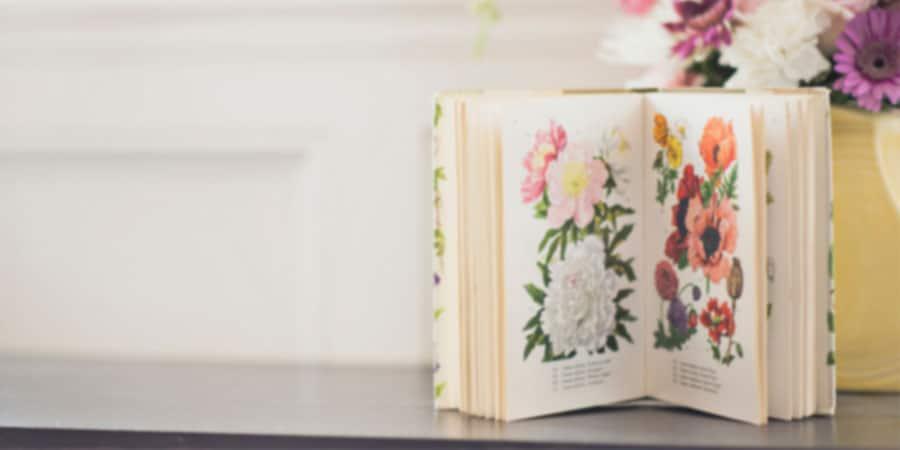 Livres Béatrice Bernard-Poulin