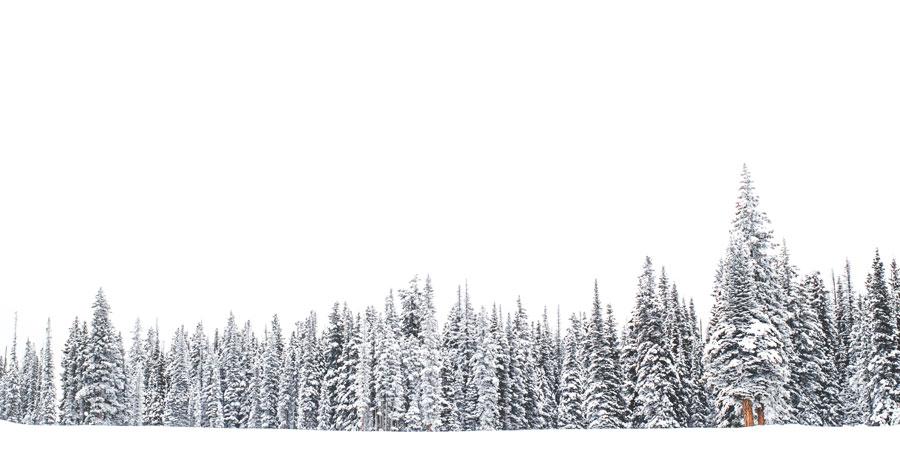 Image à la une : activité hivernale gratuite