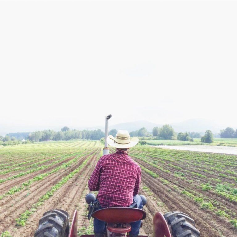 Homme sur un tracteur