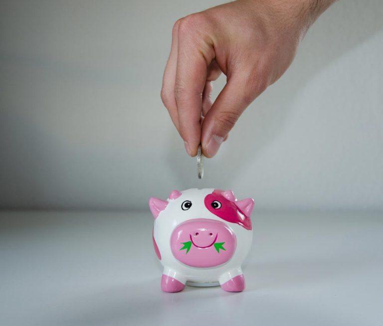 épargne dans un petit cochon