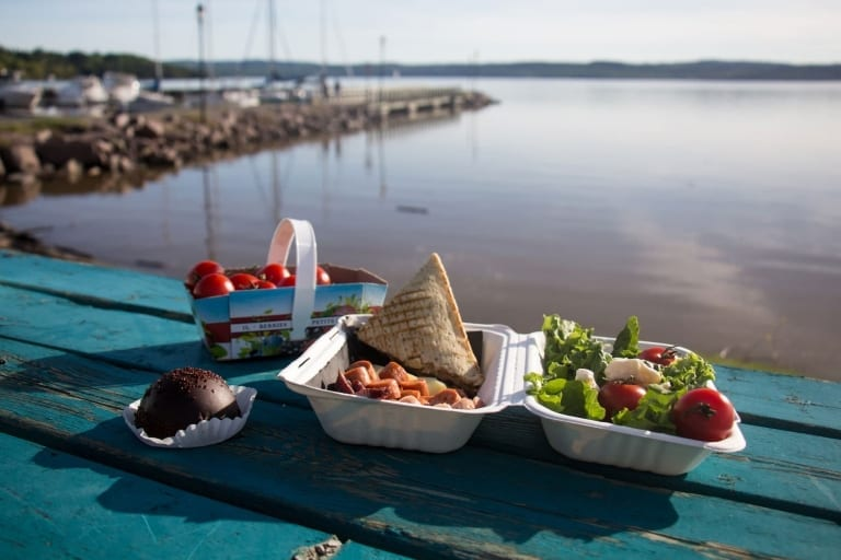 Pique-nique sur le bord du lac Témiscamingue