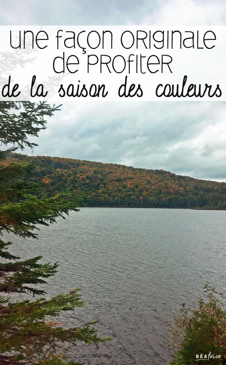 Image pour Pinterest : saison des couleurs