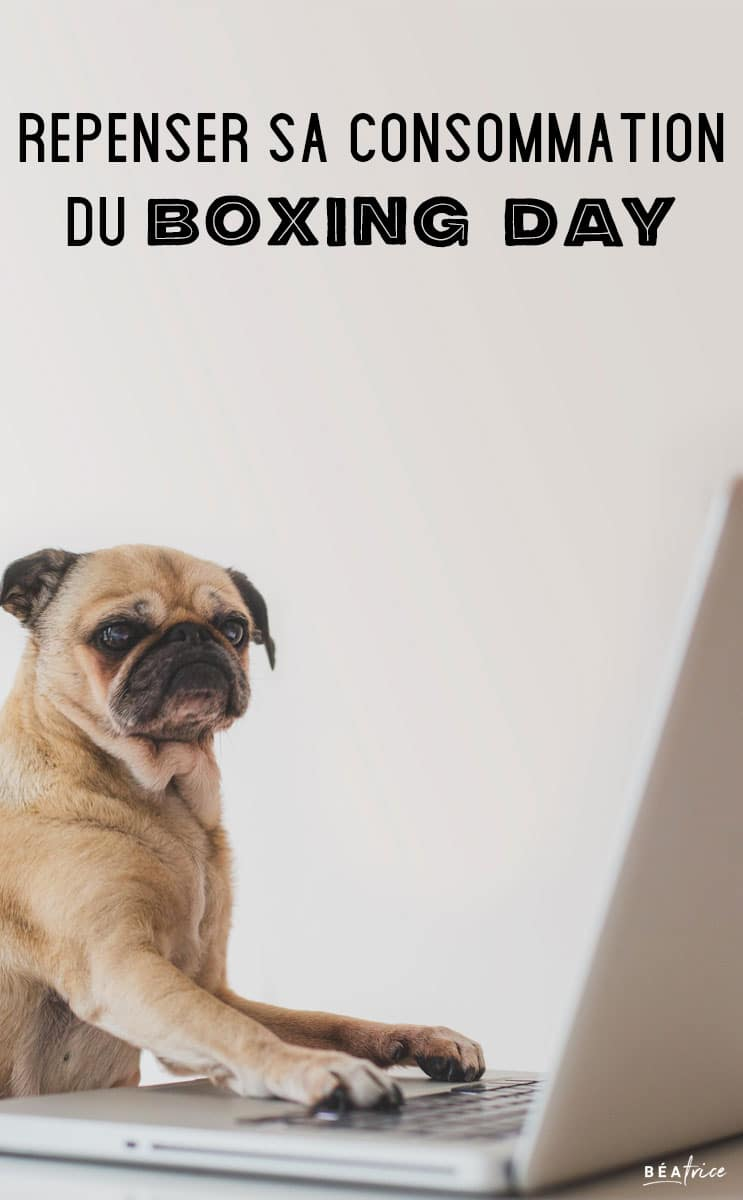 Image pour Pinterest : Boxing Day