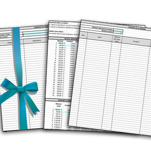 Outils Excel exclusifs pour abonnées