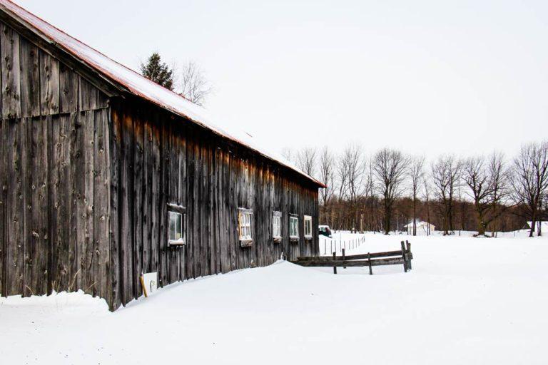 Paysage hivernal de Montérégie