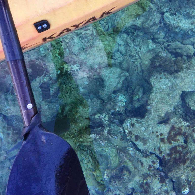 Couleur de l'eau au Roatan