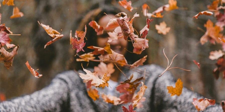 Image à la une : quoi faire automne