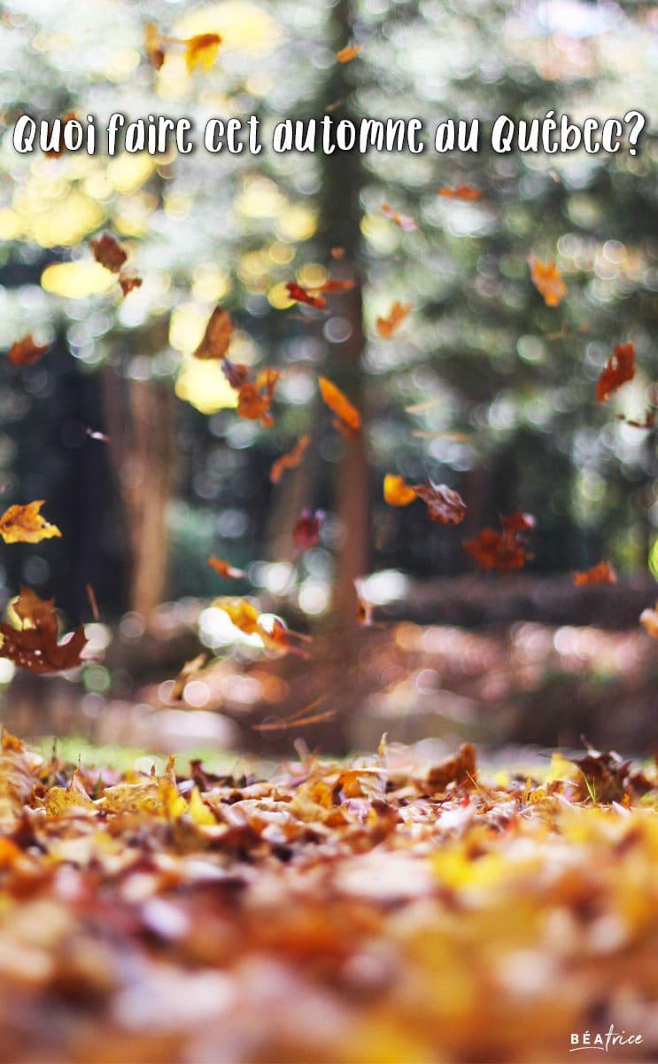 Image pour Pinterest : quoi faire automne